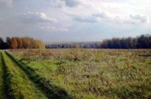 Сельскохозяйственная земля используется в Смоленской области не по назначению