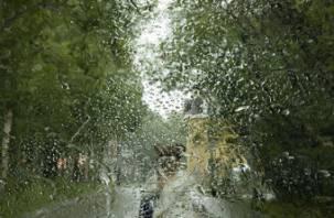 В юбилейные дни погода в Смоленске будет не праздничной