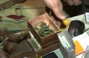 Смоленские полицейские пресекли производство марихуаны