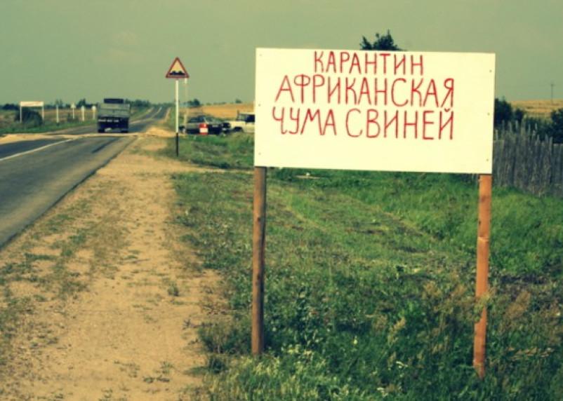 На территории Смоленской области зафиксирован очередной случай эпизоотии
