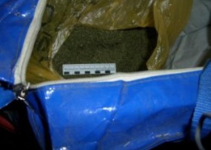 В Смоленске задержали изготовителей марихуаны