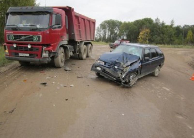 В Починковском районе водитель «Шкоды» пострадал в ДТП