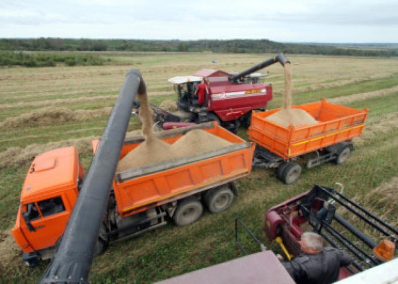 Смоленским аграриям выделят субсидии по кредитам