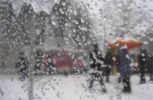 В понедельник в Смоленскую область придет зима