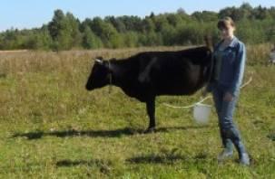 Молодых аграриев в Смоленской области заманивают «подъемными»