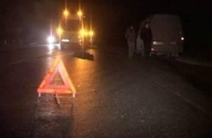 В Рославльском районе погиб пешеход