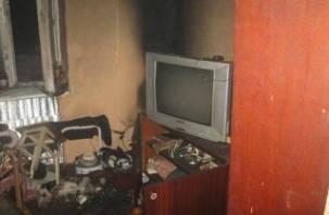 Пожар в Дорогобужской районе унес жизнь человека