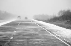 Сегодня на территории Смоленской области объявлен «желтый» уровень опасности
