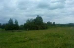 В Смоленском районе осудят чиновницу за аферу с землей