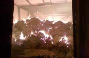 В деревне Титково сгорело 12 тонн сена
