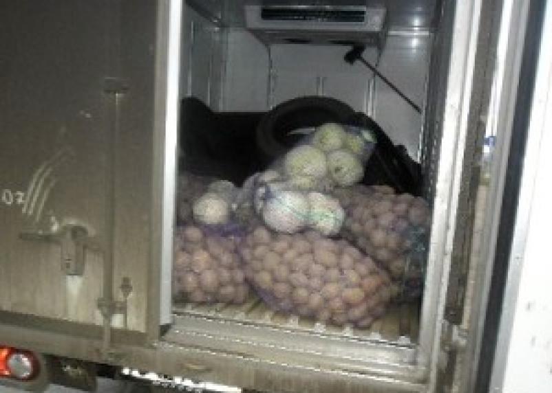 В Смоленскую область ввезен подозрительный картофель