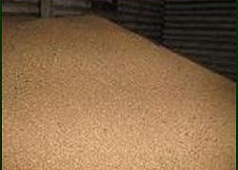 Два сельхозпроизводственных комплекса Смоленской области нарушали правила использования семян