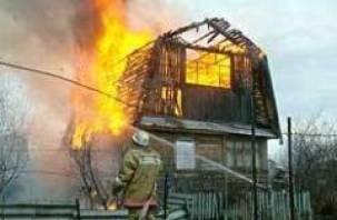 В Смоленской области сгорели два дома, две бани, торговый павильон и автомобиль