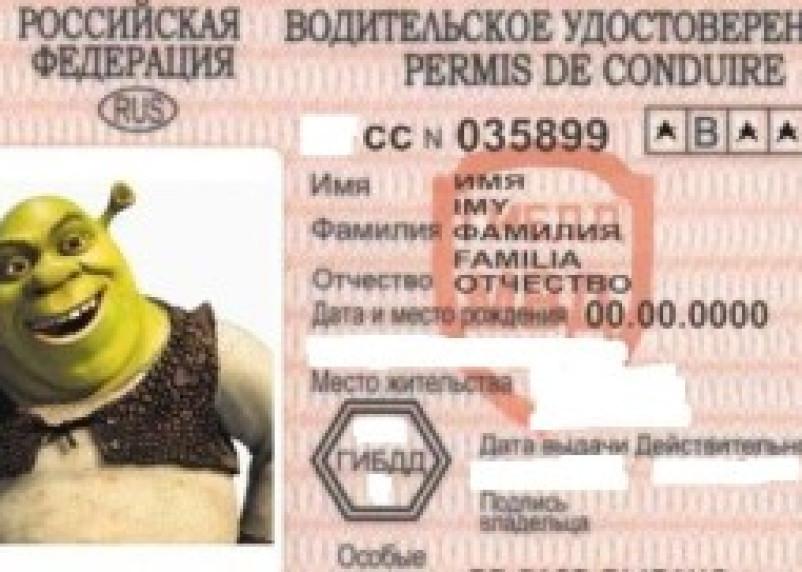 Задержан смолянин с поддельными водительскими правами