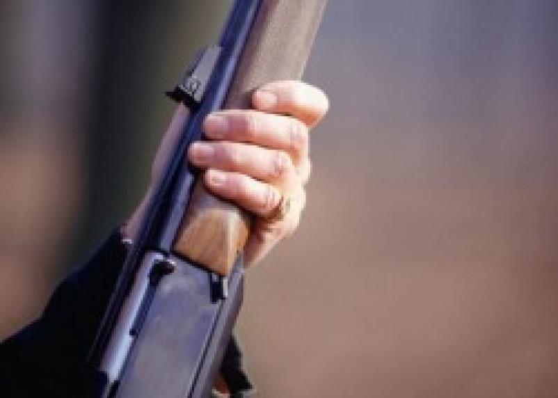 Пьяный житель Дорогобужского района застрелил собаку