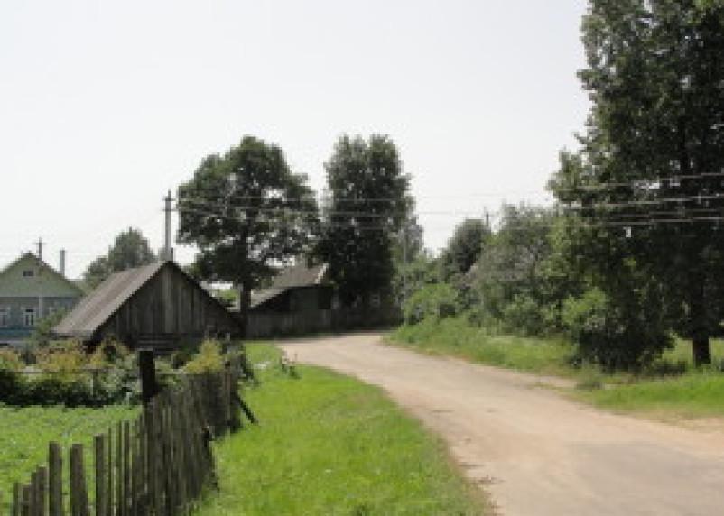 В Демидовском районе восстановлены льготы на земельный налог ветеранам и инвалидам войны