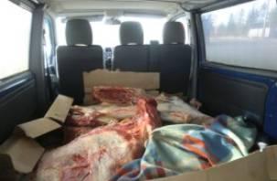 В Смоленскую область пытались незаконно ввести полтонны белорусской говядины