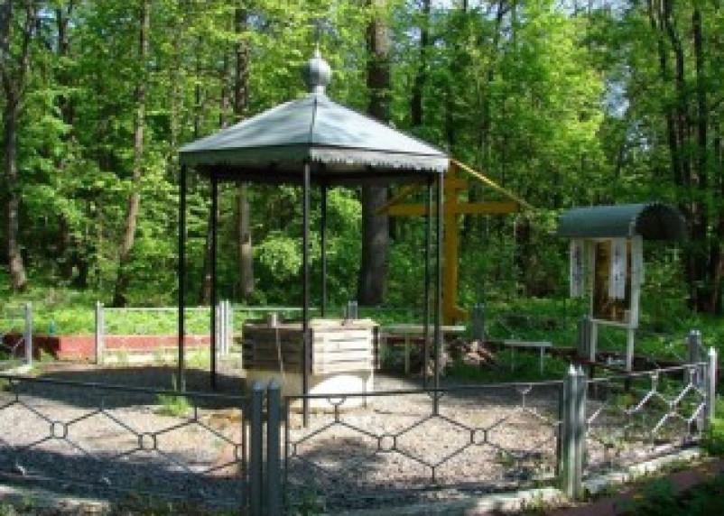 На Смоленщине появится новый памятник природы