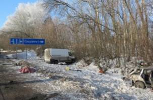 В Смоленской области в ДТП погибло два человека