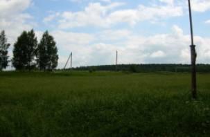 В Смоленском районе незаконно оформлены земельные участки