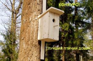 Юных смолян приглашают участвовать в конкурсе на лучший птичий домик