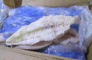 18 тонн эквадорского хека, прибывшего на смоленскую землю, будут возвращены литовскому отправителю