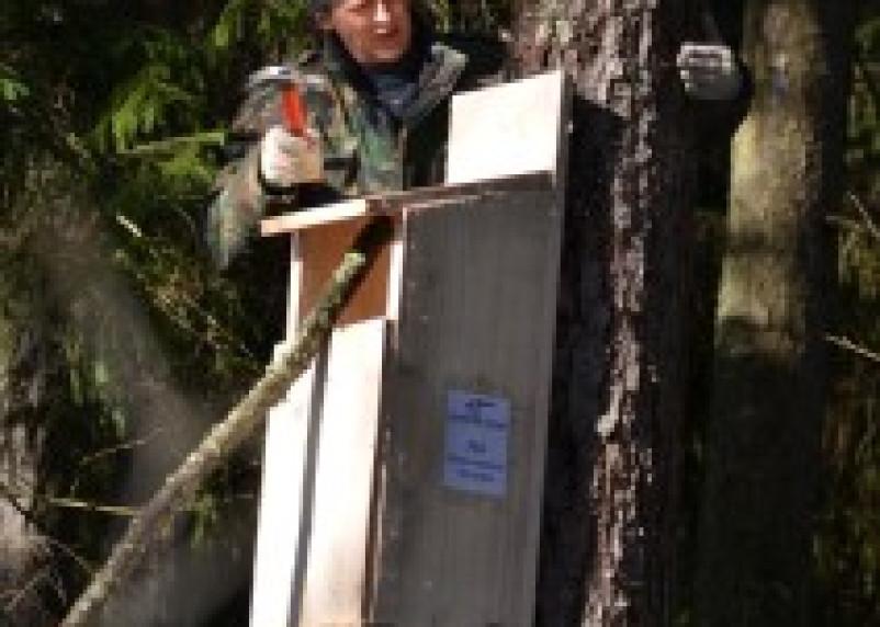На Смоленищне реализуется программа переселения в доступное и комфортное жилье… для сов и гоголей