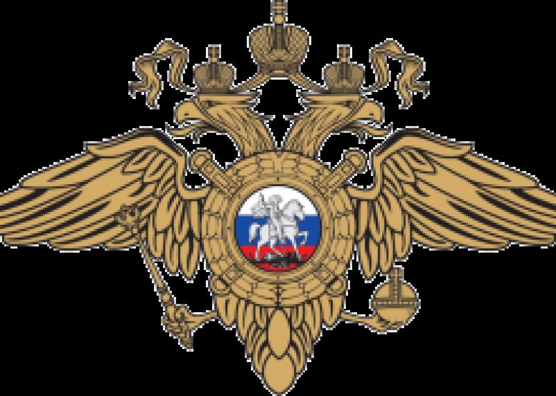 Москвич поблагодарил дорожных полицейских трассы Москва-Минск