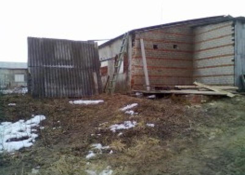 Суд приостановил работу Ельнинского свиноводческого хозяйства