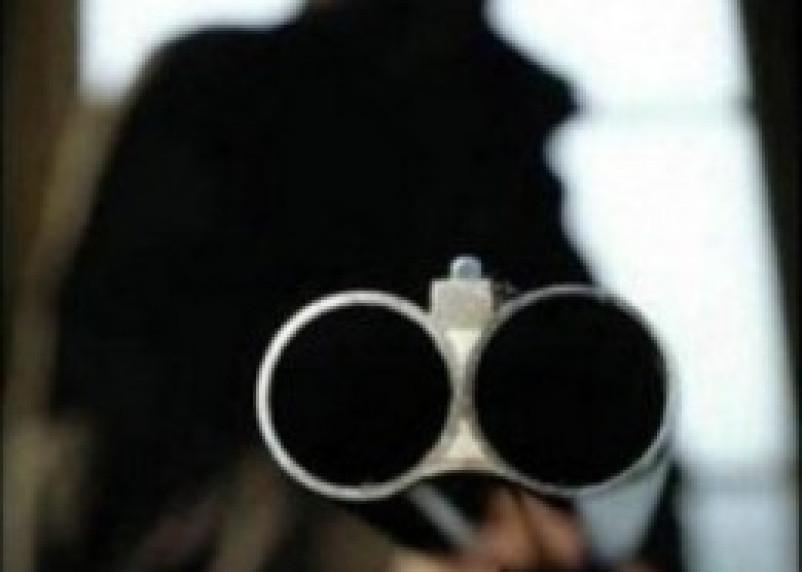 Ельнинский пенсионер застрелил сына и пытался убить топором жену