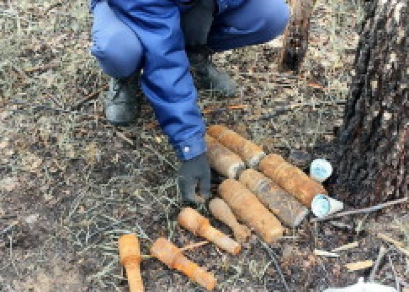 В Кардымовском районе саперы обезвредили 20 минометных мин