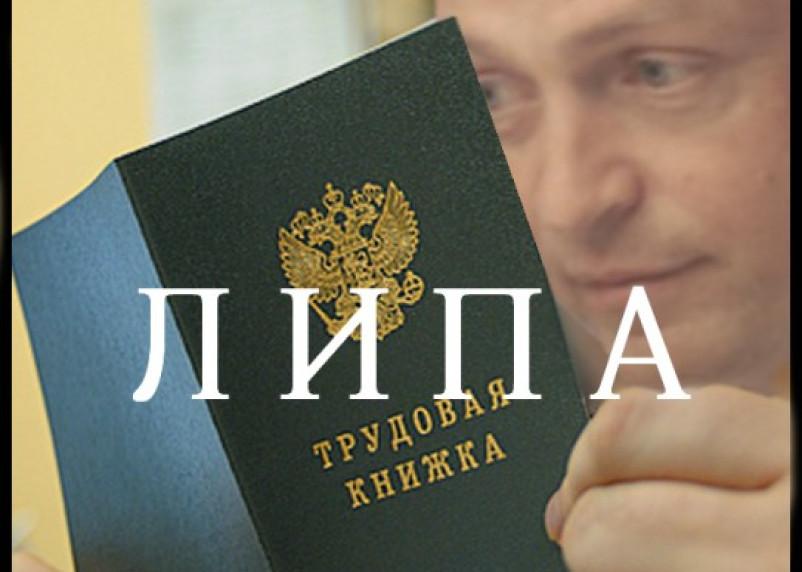 «Единая Россия»: закон, что дышло
