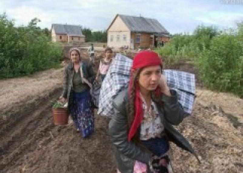 В поселке Глинка задержаны подозреваемые в кражах цыганки