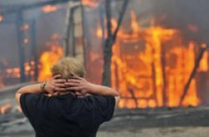 Воры, обокравшие и поджегшие дом в Починковском районе, задержаны