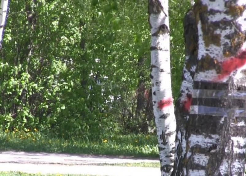 Парк 1100-летия Смоленска превращается в автостоянку?