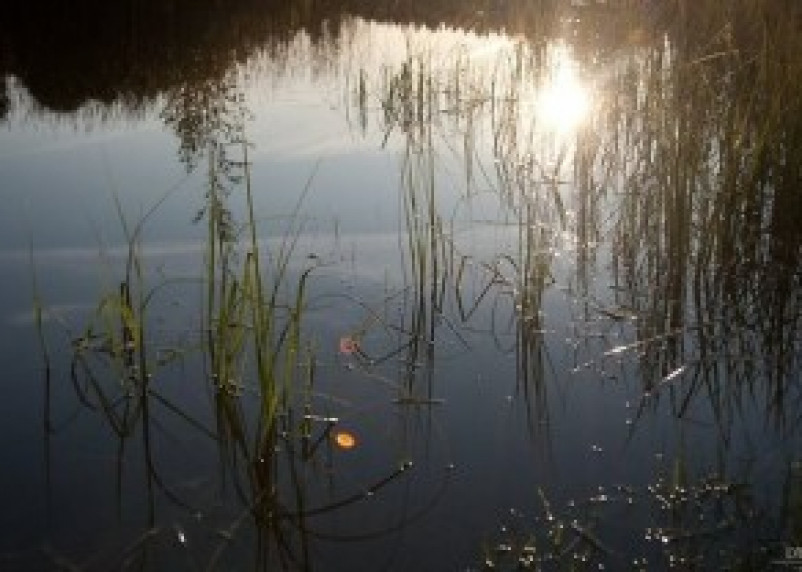 В Гагаринском районе погиб 3-летний ребенок
