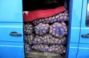 В Смоленскую область снова запретили ввоз белорусского картофеля