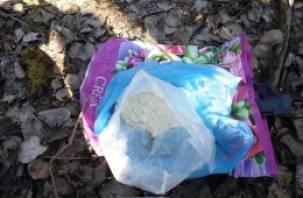 В Смоленске пресекли крупный наркоканал из Санкт-Петербурга