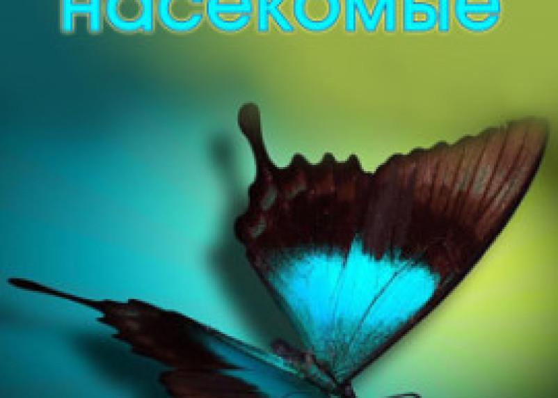 В Смоленске открылась выставка тропических насекомых