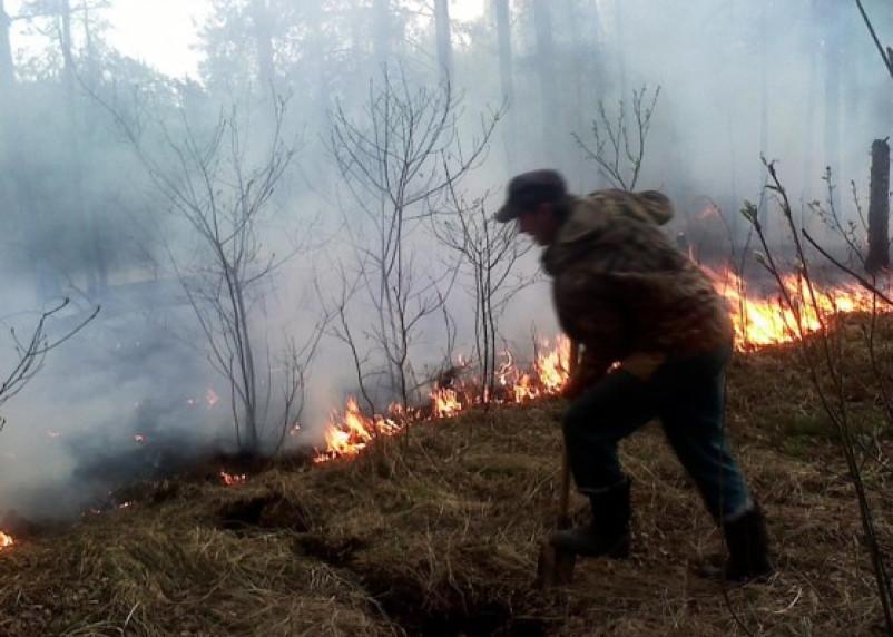 На Смоленщине начался пожароопасный сезон