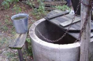 Пить воду из смоленских родников и колодцев – опасно