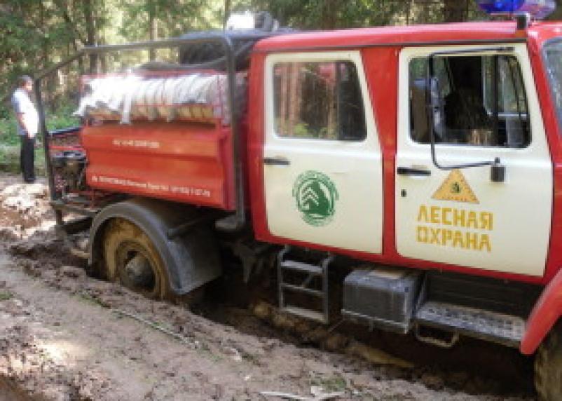 В Гагаринском районе сгорело 2 гектара леса