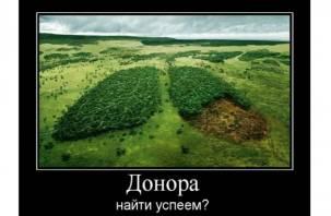 «Зелёные лёгкие»