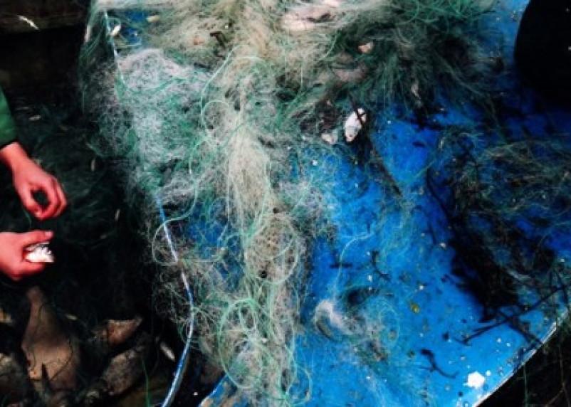 С начала июня на Смоленщине выявлены 82 нарушения правил рыболовства