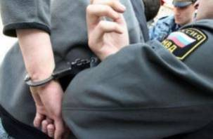 В Смоленской области один брат укусил, а второй ударил полицейского