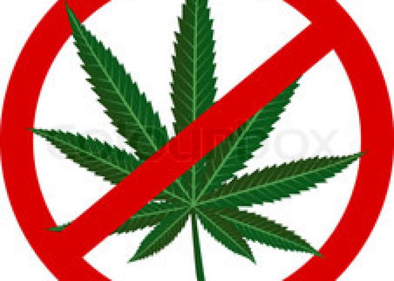 На смоленском автовокзале у пассажира обнаружили марихуану