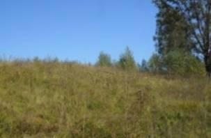 В Краснинском районе изъяли неиспользуемый участок земли