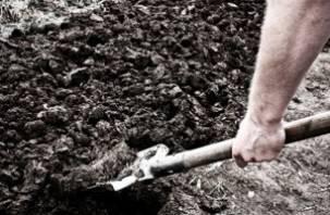 В Починковском районе дачник нашел у себя на огороде оружие
