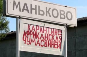 Борьба с чумой свиней в Смоленской области осталась без господдержки