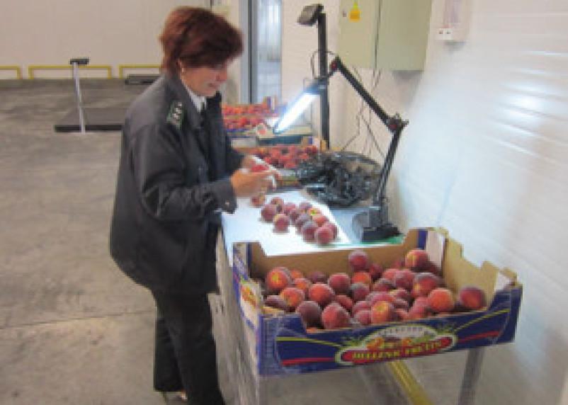 Смоляне не смогут отведать сербских персиков